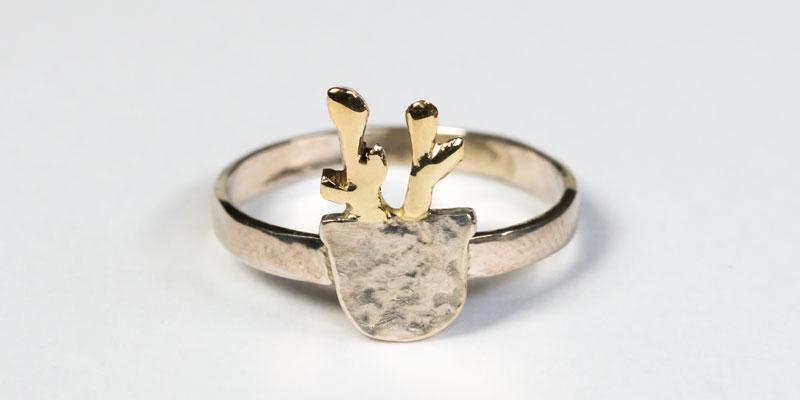 Hirschring Ring mit Geweih